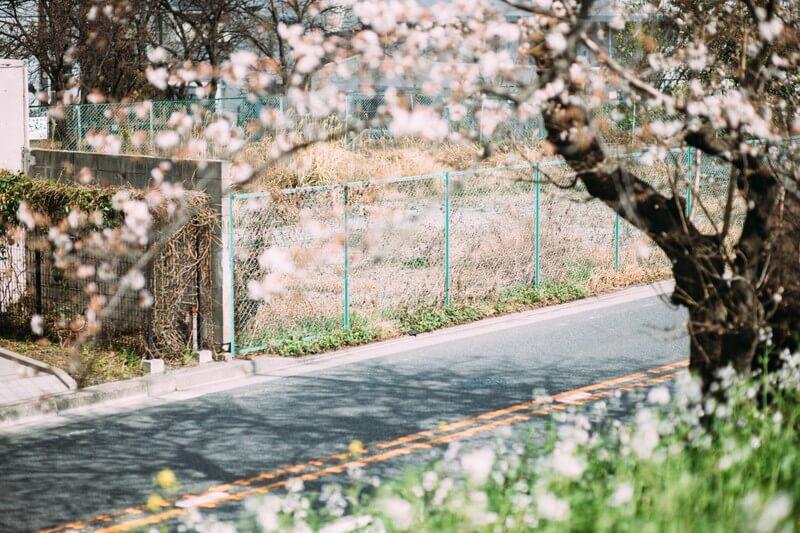 【福山雅治】福山雅治のカラオケで盛り上がる曲ランキングベスト5!